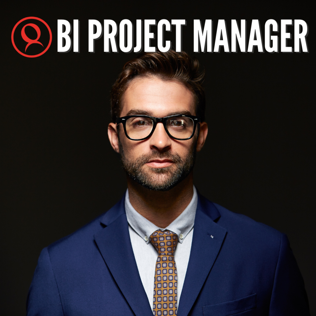Imalink - BI Project manager