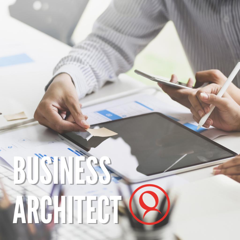 Business Architect