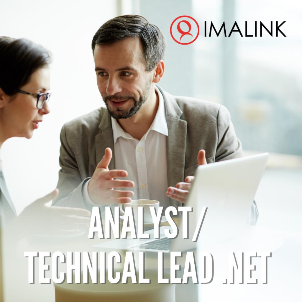 Analyst / Technical Lead .NET